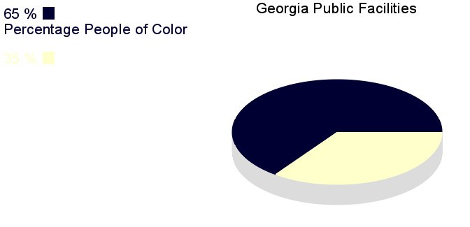 [IMG, PieChart: Georgia Public Facilities: 65% People of       Color]
