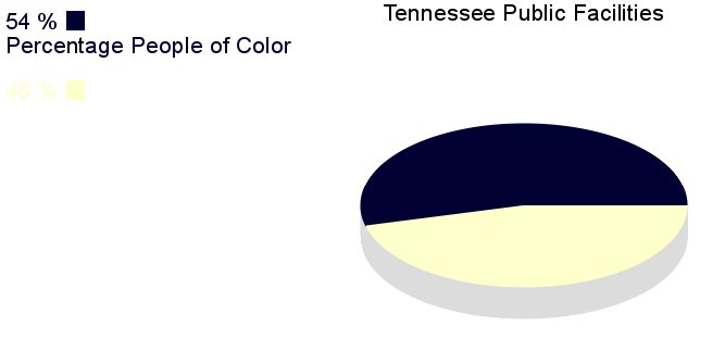 [IMG, PieChart: Tennessee Public Facilities: 54% People of       Color]